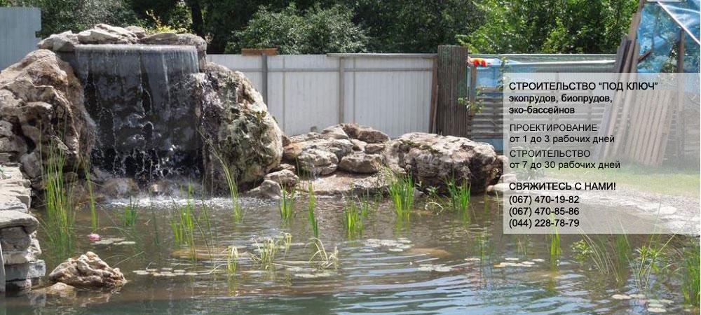 Плавательный эко пруд, био пруд, натуральный плавательный пруд