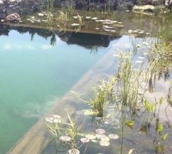 Плавательные био пруды, эко пруды. Проэктирование и строительство.